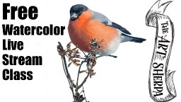 Live streaming watercolor class Funny Fall Bird on Twig   TheArtSherpa