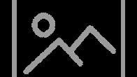 Live streaming Acrylic Class Dandelion Fluff Fall Wishing Mouse   TheArtSherpa