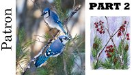 Patron Only Bluejays Part 2 | TheArtSherpa (links are on your dashboard)