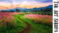 Cosmo Flower Field at Sunset Beginners Learn to paint Acrylic Tutorial Step by Step