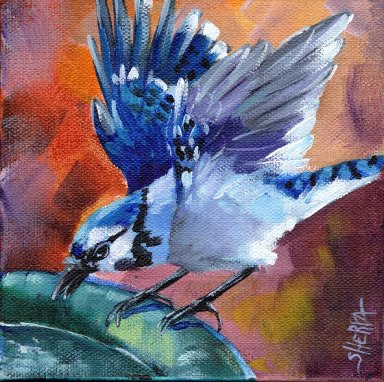 #11 Bird Hop 8x8 Print. Blue Jay by The Art Sherpa