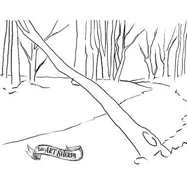 fallen tree 2021 traceable .jpg