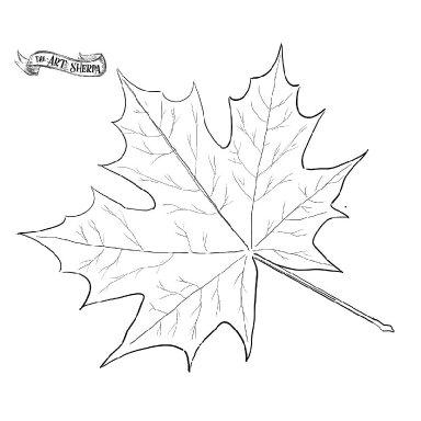 Watercolor Fall Leaf