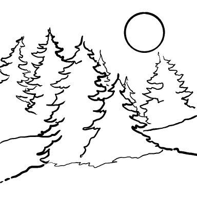Snowy Pine Tree Landscape