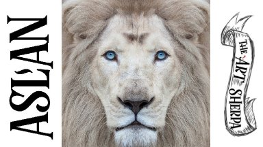 How to paint  Aslan  White Lion In acrylic step by step | TheArtSherpa