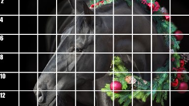 Beginners Guide How to Use the Grid method to Draw The christmas Stallion