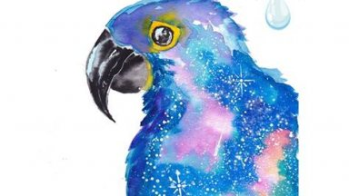 Hyacinth Macaw named Neil Watercolor - IGTV