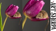 MOUSE IN A TULIP Easy How to Paint Watercolor Step by step | The Art Sherpa