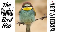 ANGRY BIRD ON BARBED WIRE  | Beginners Acrylic Tutorial Step by Step | The Painted Bird Hop