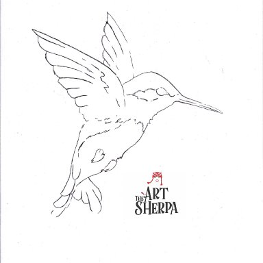 search results for hummingbird traceable the art sherpa