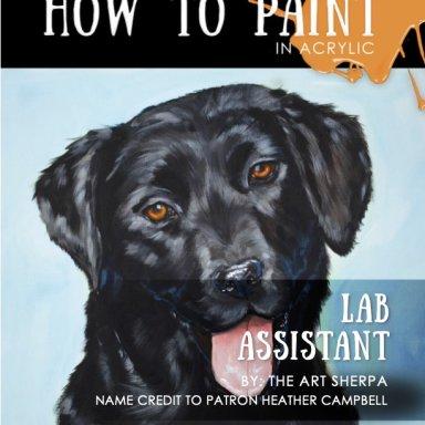 Black labrador Minibook Step by step
