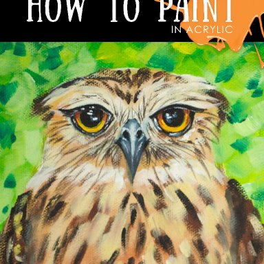 Owl Be Your Friend - Grumpy Owl - September Bird-A-Thon Collaborative with Ginger Cook
