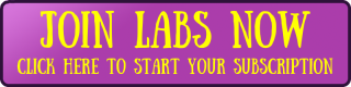 LaBS Join Button.png