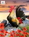 Sassy Rooster 2.jpg