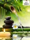 Mindful Zen Ref.jpg