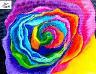 painted rose rainbow.jpeg