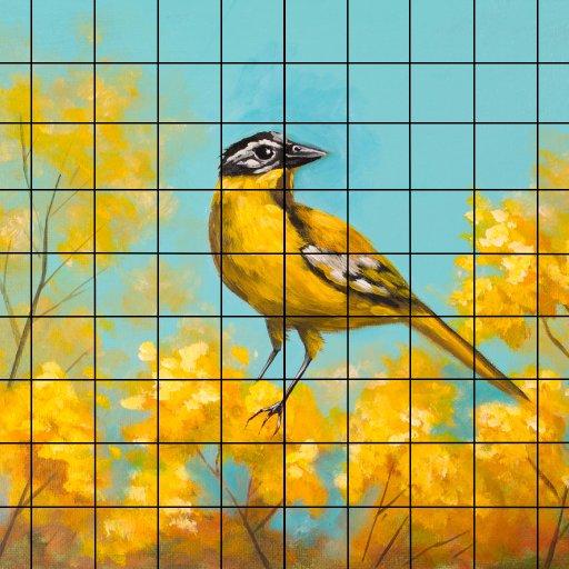 sunshine bird grid