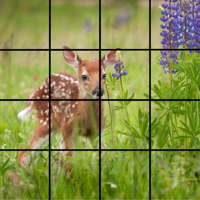 grid 27.jpg