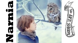 thumbnail  TAS210112.01 Boy and Owl.jpg