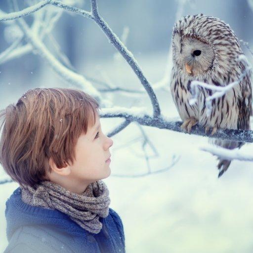 thumbnail  TAS210112.01 Boy and Owl