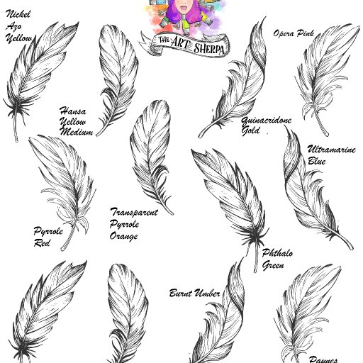 Watercolor Feather Swatching page blank