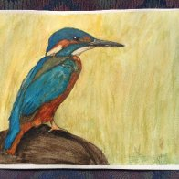 Kingfisher - watercolor