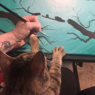 Suzi Helping me paint