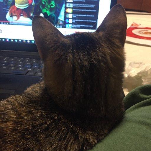 Suzi watching Art Sherpa Lion Lesson 2