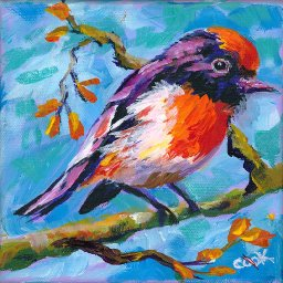 #10 Bird Hop  8x8 Print. Red Capped Robin by Ginger Cook 8x8 Print
