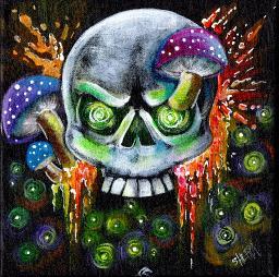 Sherpa Stash Sale - Mushroom and Skull Spooky Magic Painting