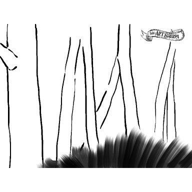 birch tree traceable .jpg