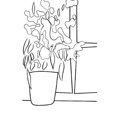 flower window Traceable