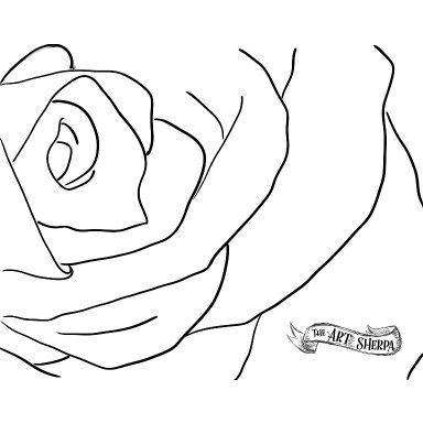 traceble rose .jpg