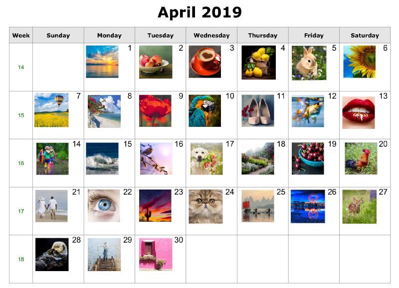 april2019 Art Sherpa  2 copy.jpg