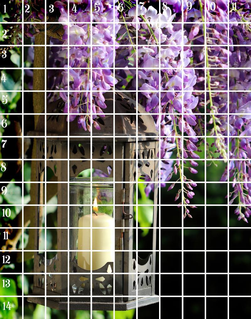 wisteria Candle 11x14 grid .jpg