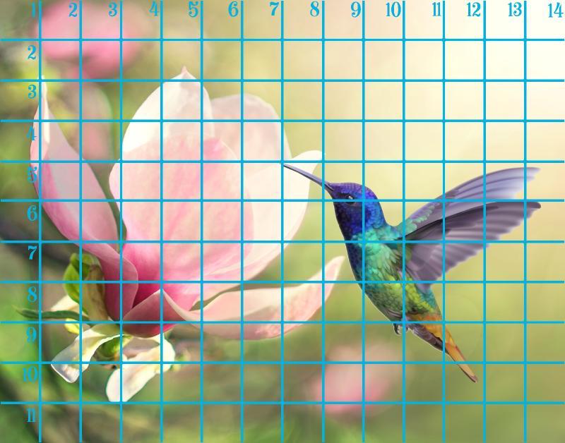 11x14 horizontal 1 magnolia .jpg