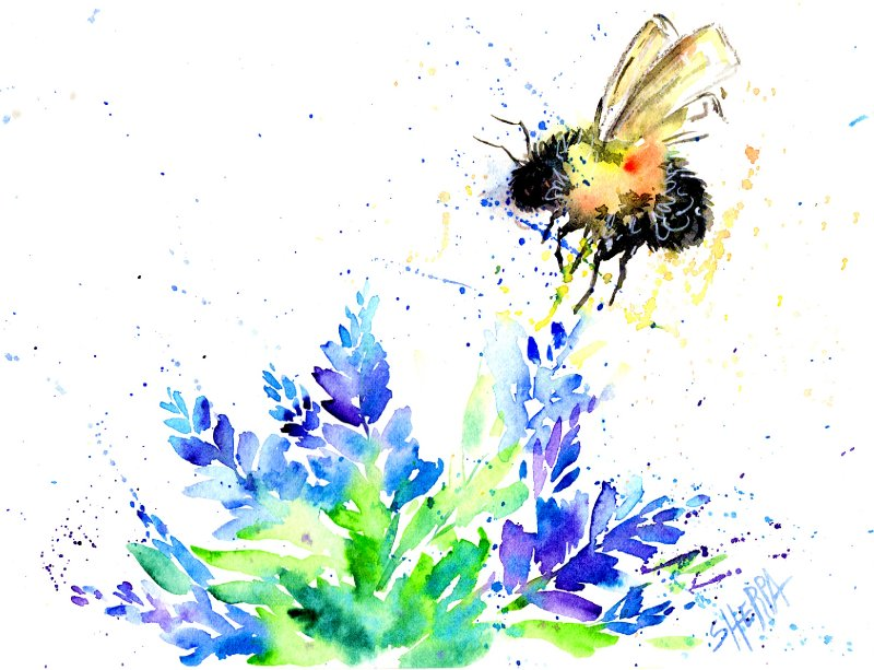 bee watercolor .jpg
