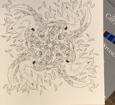 coloring book 2.jpeg