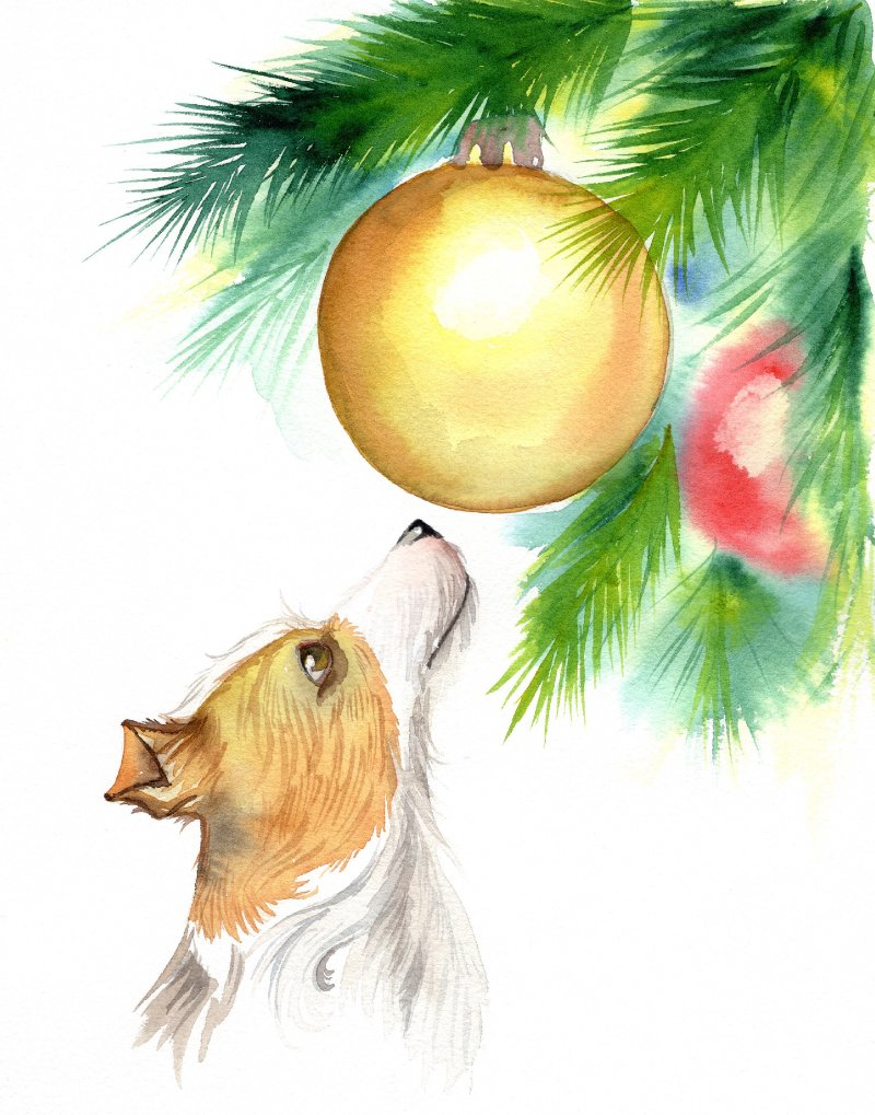 Christmas dog.jpg