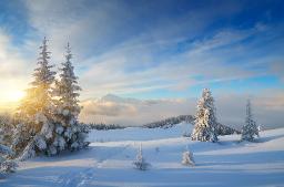 Snowscape dreamstime_xxl_45021281.jpg