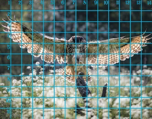 bird in flight tracable.jpg