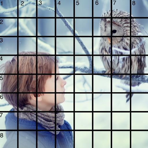 8 x 8 Refences and Grid owl boy narnia .jpg