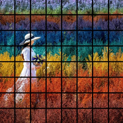 8 x 8 Refences and Grid .jpg