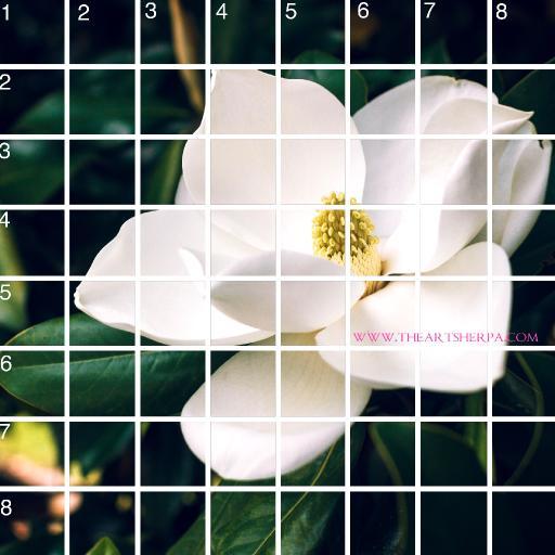 8 x 8 Refences and Grid magnolia .jpg
