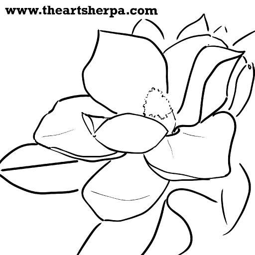 magnolia traceable .jpg