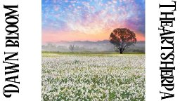 dawn bloom.jpg