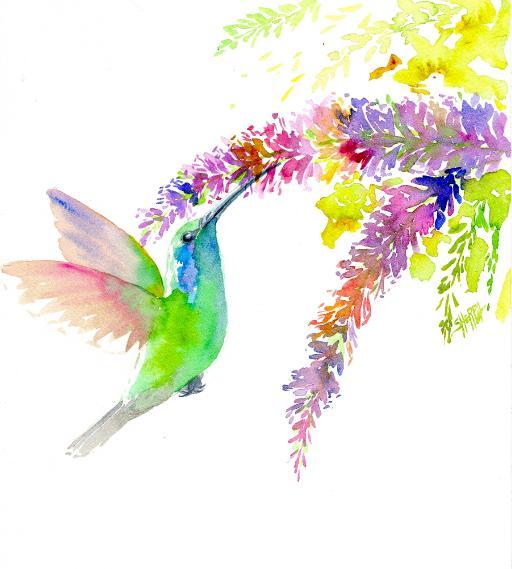 humming bird 3rd scan .jpg