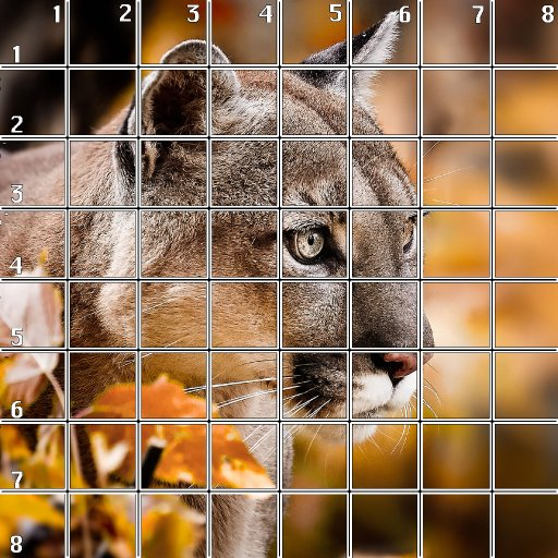 8 x 8 Refences and Grid mountian lion .jpg