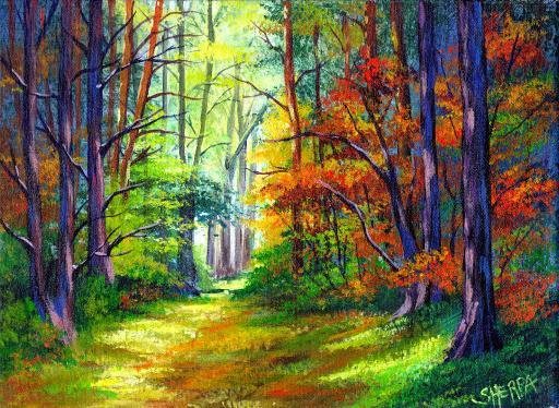 fall forest path .jpg