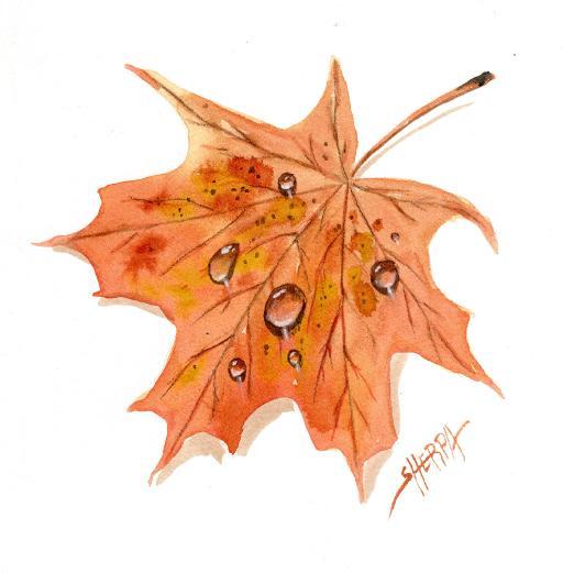 fall leaf waterdrop .jpg